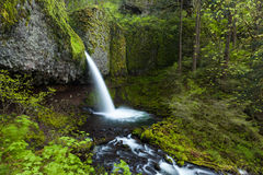 Upper Ponytail Falls In Columbia River Gorge, Oregon Stock Photo