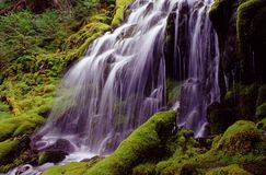 Upper proxi falls. Scenic image of a waterfall Stock Photography