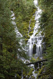 Upper Proxy Falls Royalty Free Stock Image
