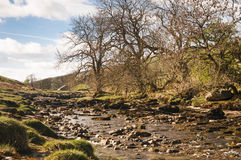 Upper River Wharfe Stock Photography