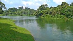 Upper Seletar Reservoir stock images