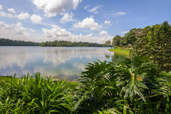 Upper Seletar Reservoir in Singapore Stock Image