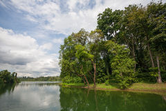 Upper Seletar Reservoir in Singapore Stock Images