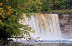 Upper Tahquamenon Falls. The Upper Falls at Tahquamenon State Park in Michigan's Upper Peninsula flows with tannin-stained water stock image