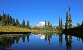 On Upper Tipsoo Lake Royalty Free Stock Photos