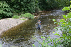 Upper view of fly-fisherman fishing Royalty Free Stock Image