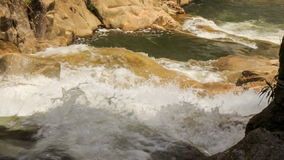 Upper view of foamy mountain stream among stones in park stock footage