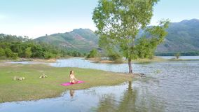 Upper view tree surrounded by lake hills and girl on grass. Pictorial upper panorama large lone tree on lake bank surrounded by beautiful forestry hills under stock footage