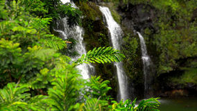 Upper Waikani Falls Along the Road to Hana in Maui Stock Images