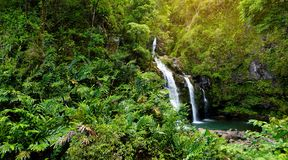 Upper Waikani Falls also known as Three Bears, a trio of large waterfalls amid rocks & lush vegetation with a popular swimming hol. E, off the Road to Hana Royalty Free Stock Images