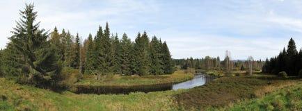 Upper watercourse of Vltava - the longest river in Czech republic Stock Images