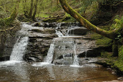 Upper Waterfall Pwll-y-Wrach Royalty Free Stock Photography