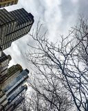 Upper west side trump buildings Stock Photography
