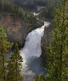Upper Yellowstone Falls. The view from above Upper Yellowstone Falls Stock Photography