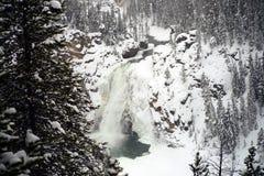 Upper Yellowstone Falls Stock Photography