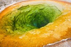 upper yellowstone för handfatgeysernationalpark Fotografering för Bildbyråer