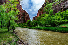 Upper Zion National Park, Utah. Royalty Free Stock Images