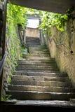 uppför trappan Arkivbilder