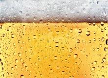Uppfriskande öl arkivbild