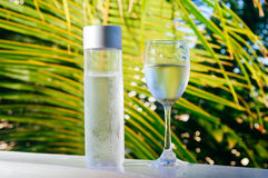 Uppfriskande drickbart kallt vatten i flaskan Kallt vatten med tropisk bakgrund arkivbilder