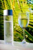 Uppfriskande drickbart kallt vatten i flaskan Kallt vatten med tropisk bakgrund royaltyfria bilder