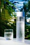 Uppfriskande drickbart kallt vatten i flaskan Kallt vatten med tropisk bakgrund royaltyfri bild