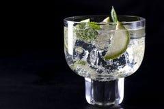 Uppfriskande drink Royaltyfri Bild