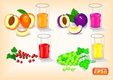 Uppfriskande fruktsafter med doftande frukter och bär stock illustrationer