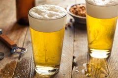 Uppfriskande halv liter för sommar av öl royaltyfria bilder