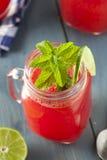 Uppfriskande hemlagad vattenmelonAgua Fresca Arkivfoton