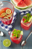 Uppfriskande hemlagad vattenmelonAgua Fresca Royaltyfri Bild