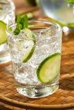 Uppfriskande isvatten med limefrukt Arkivbilder