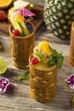 Uppfriskande kalla Tiki Drink Cocktails Royaltyfri Fotografi