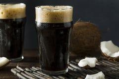Uppfriskande kallt mörkt kokosnötöl arkivbild