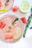 Uppfriskande vattenmelondrink fotografering för bildbyråer
