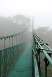 Upphängningbro i molnskog Royaltyfri Foto