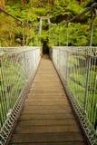 Upphängningbro i skog Royaltyfri Bild
