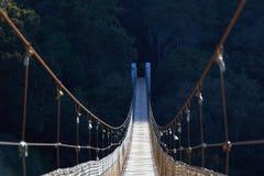 Upphängningbro med halv skugga royaltyfria bilder