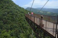 Upphängningbro, Okatse kanjon, Georgia royaltyfria bilder