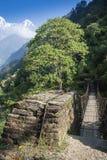 Upphängningbro på den Annapurna strömkretsen Arkivfoton