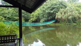 Upphängningbron över sjön på Rainforestupptäcktmitten i Sepilok, Borneo Royaltyfri Foto