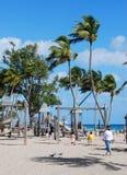 upphetsa för stranddag som är tropiskt royaltyfri bild