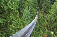 Upphängningbro i skog Fotografering för Bildbyråer