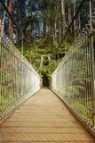 Upphängningbro i skog Royaltyfria Bilder