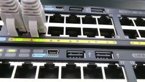 Uppkopplingsmöjlighet för Ethernetnätverk Lappkablar pluggade in i en dataströmbrytare stock video