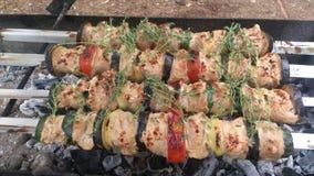 Uppläggningsfat av kebaber Royaltyfri Bild