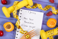 Upplösningar för det nya året som är skriftliga i anteckningsbok på lilor, stiger ombord Royaltyfri Fotografi