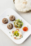Uppläggningsfat för mezze för mat för mellanmål för startknapp för Falafelhummushoumus Royaltyfri Bild