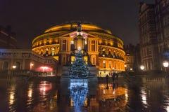 Upplyst julgran, kungliga Albert Hall på natten, södra Kensington, London, England, UK royaltyfria bilder