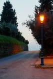 Upplyst Streetlight Royaltyfri Fotografi